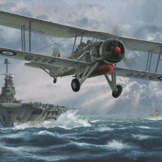 Flight Against The Bismarck Swordfish