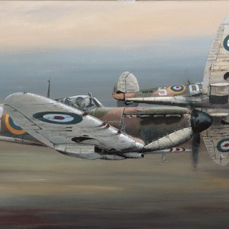 In Defence of Britain Spitfire