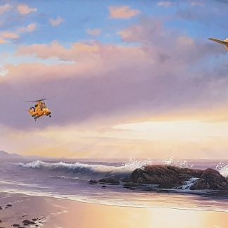 Royal Rescue Team - Sea-King