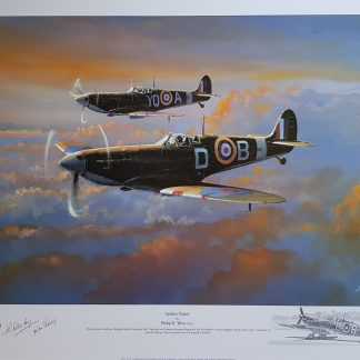 Spitfire Patrol Philip West Remarque