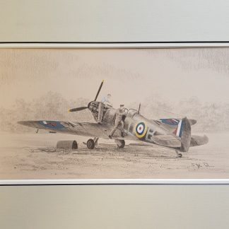 Spitfire of 602 Squadron By Stephen Brown