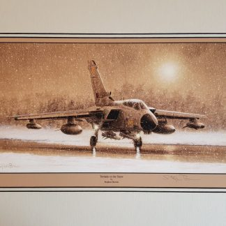 Tornado in the Snow By Stephen Brown