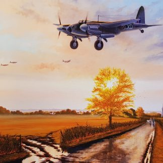 Dawn to Dusk - Mosquito By Stephen Brown