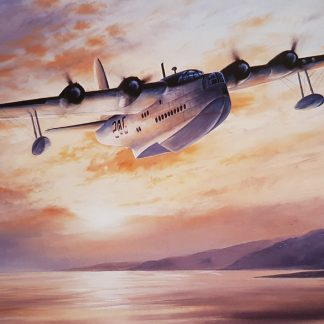 Tireless Vigilance - short sunderland
