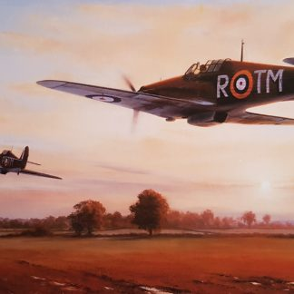Defending the Line - Hurricane by Stephen Brown
