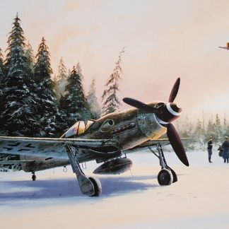 Eastern Front Eagles - Focke-wulf by Stephen Brown
