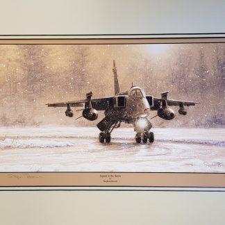 Jaguar in the Snow By Stephen Brown