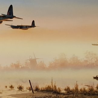 Quite Moments Mosquito By Stephen Brown