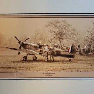 Spitfires of 41 Squadron By Stephen Brown