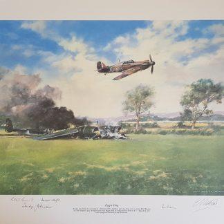 Eagle Day Geoff Nutkins