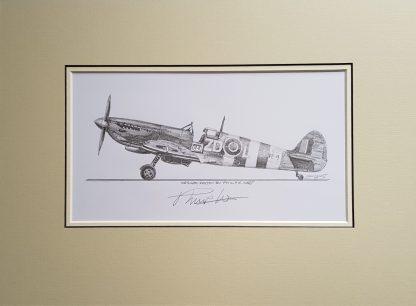 Spitfire Philip West original