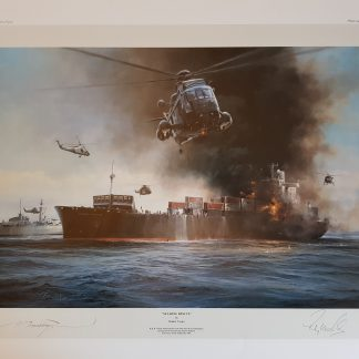 sea king rescue Robert Taylor