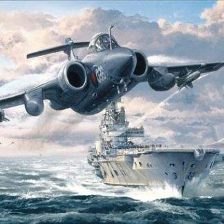 Buccaneer Strike Force greeting card