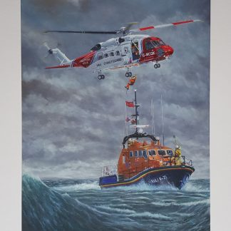 Skorski S-92 and Tamar Class Lifeboat